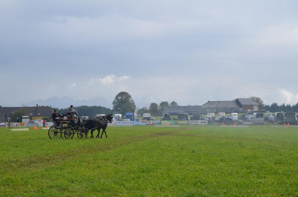 Fahrertreffen 2014 des Reit- und Fahrverein Bad Leonfelden