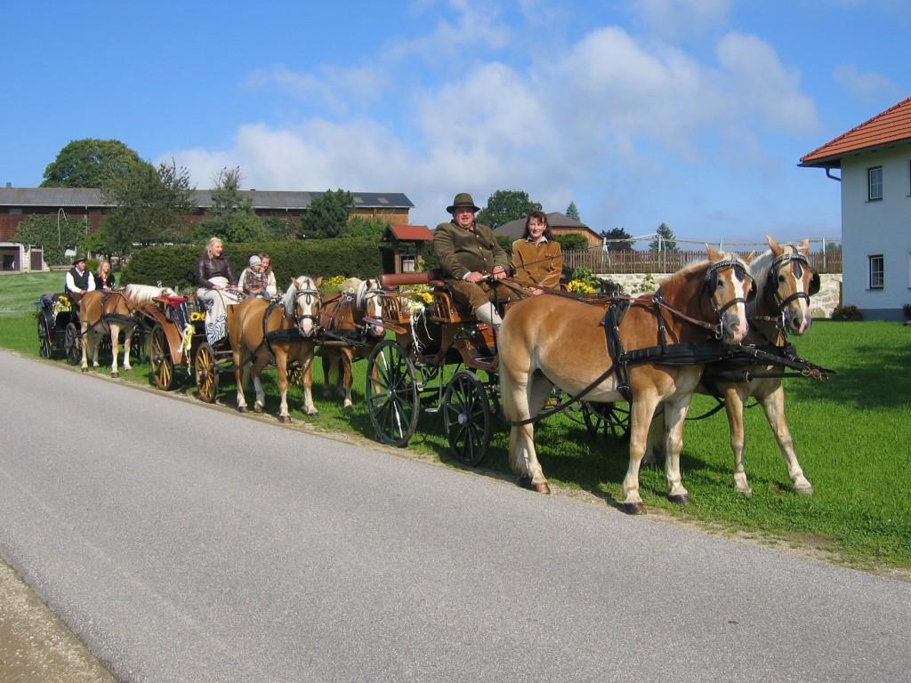 Unsere Kutschen bieten 2 bis 7 Personen Platz, für ihre spezielle Hochzeit stehen auch historische Viktoria-Wagen zu Verfügung.